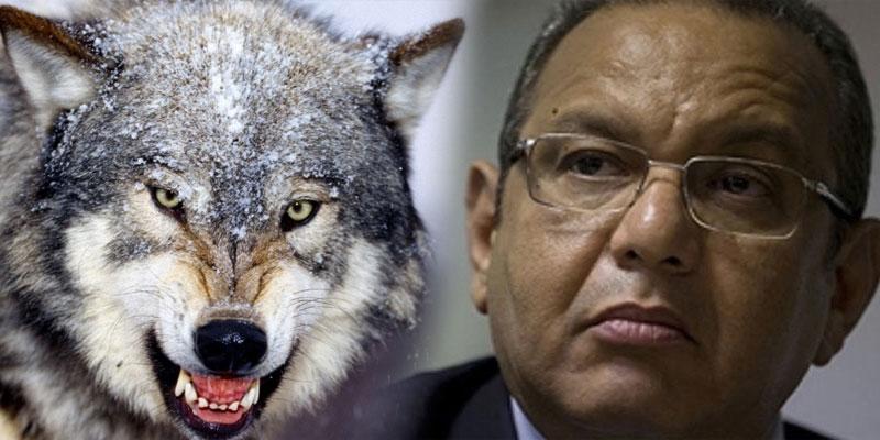Ce ne sont pas nous qui élevons des loups, c'est les autres déclare Majoul