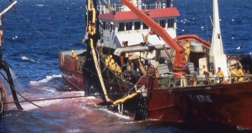 فشل المغرب وأوروبا في التوصل إلى اتفاق الصيد