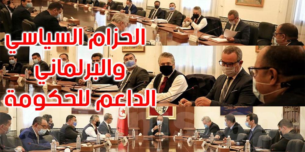 بينهم نبيل القروي، ماذا في لقاء المشيشي بعدد من ممثلي الأحزاب ؟