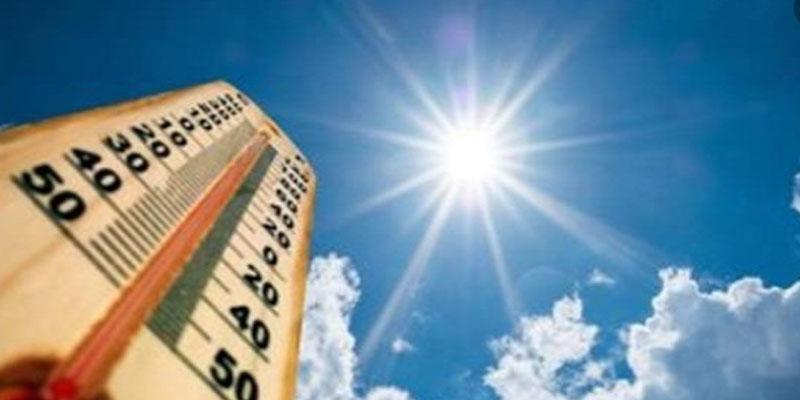 الرصد الجوي: تقلص ملحوظ في شدة الرياح وسرعتها هذا اليوم والحرارة تتجاوز 30 درجة