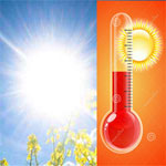 اليوم: تواصل ارتفاع درجات الحرارة مع ظهور الشهيلي