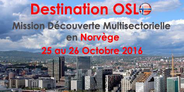 Mission Découverte Multisectorielle en Norvège