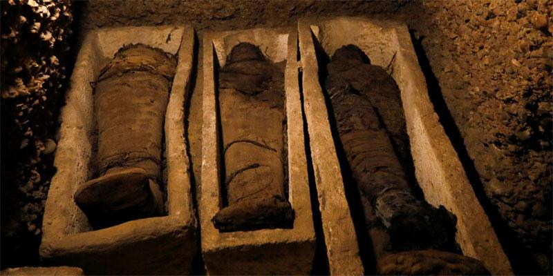 مصر: الكشف عن سر المومياء المجهولة في المتحف المصري