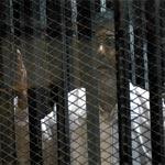 اليوم محاكمة مرسي بتهمة التخابر