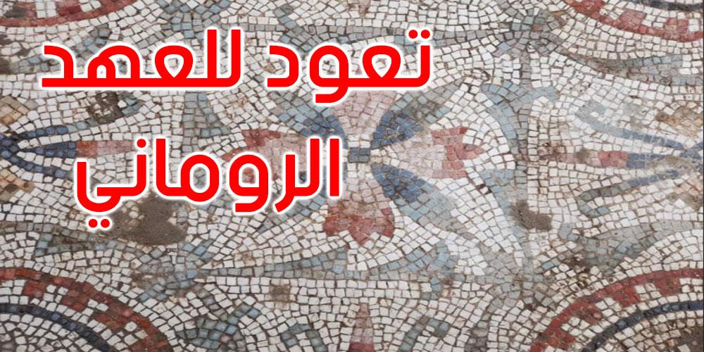 صور: منوبة: اكتشاف أرضية فسيفسائية رومانية نادرة ببرج العامري
