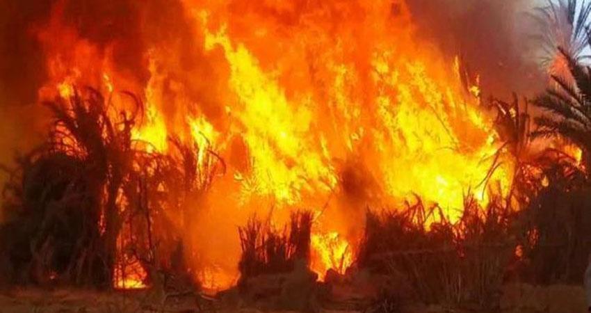 نزوح المئات من الموصل بسبب حرائق في مزارع للقمح والشعير