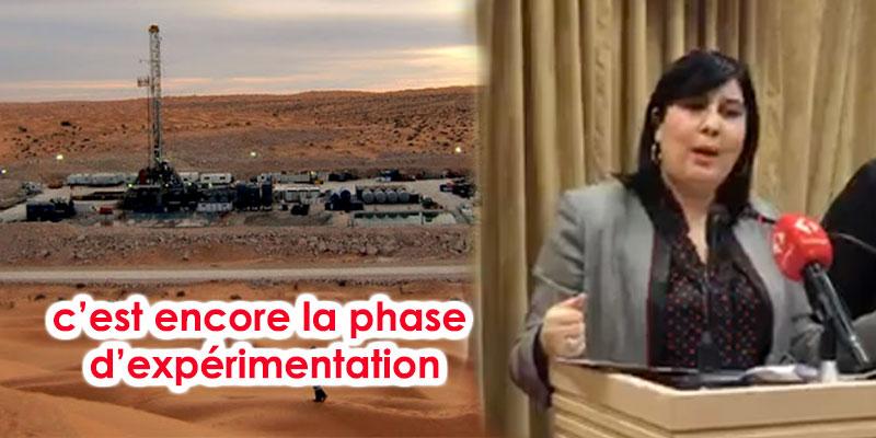 Abir Moussi : contrairement à ce qui est avancé par Chahed, Nawara n'est pas encore productif