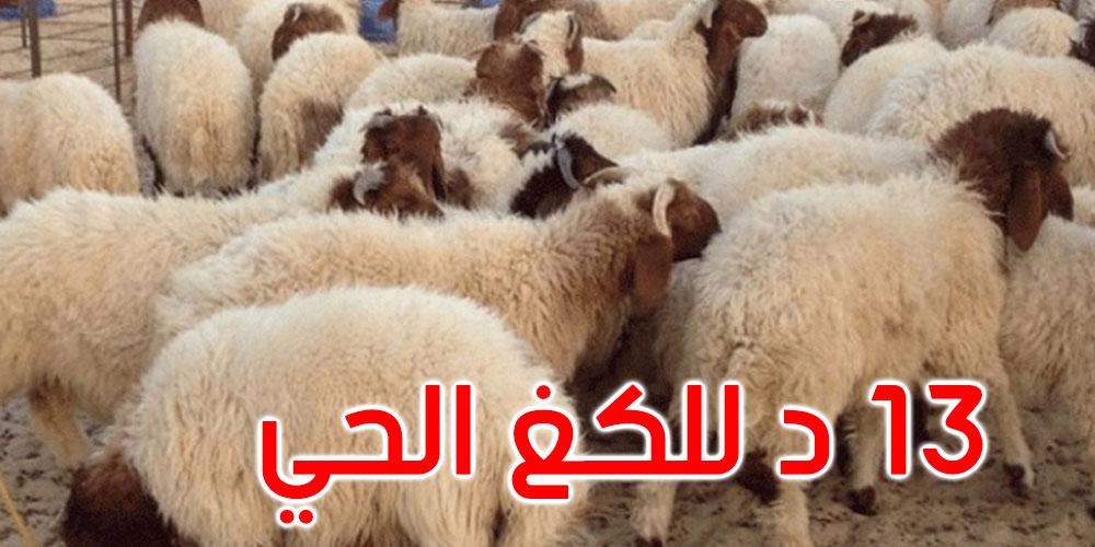 أضاحي العيد: اعتماد سعر مرجعي موحد في حدود 13 دينارا للكلغ الحي