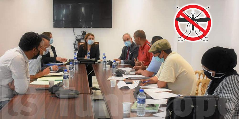 La municipalité de Tunis commence sa guerre contre les moustiques...en retard