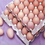 Le ministère du Commerce : L'eau minérale, les œufs et le lait sont disponibles sur le marché