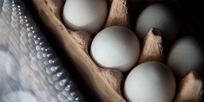 Le prix des œufs ne sera pas augmenté, affirme Samir Taieb