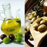Inauguration de la saison des olives