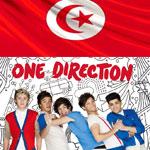 Les Tunisian Directioners se mobilisent sur Twitter pour attirer l'attention de leur goupe préféré