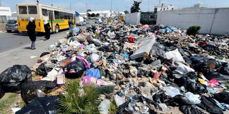 Vers une stratégie de valorisation des ordures