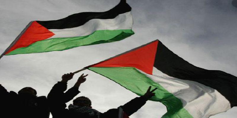 في مدارج ملعب كرة قدم: القبض على مشجع مصري رفع علم فلسطين