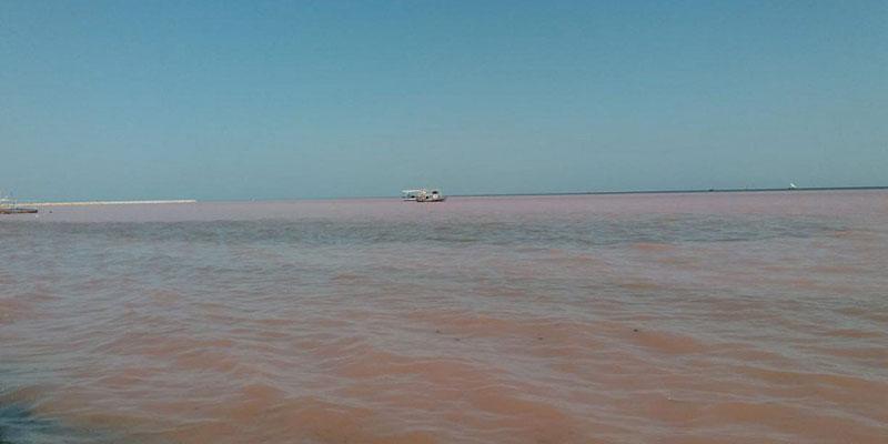 La pollution environnementale dilapide 2,5% du PIB tunisien, avance la députée Leila Ouled Ali