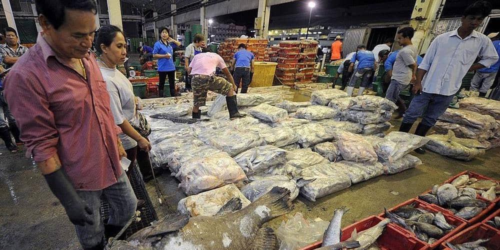 عام من ''كارثة ووهان''، كورونا يتفشى داخل سوق للأسماك