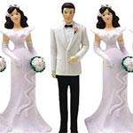 M.Bahri Jelassi : Il faut autoriser la polygamie pour réduire le viol et l'harcèlement en Tunisie