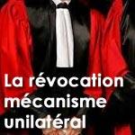 Raoudha Labidi : la révocation est un mécanisme dangereux et unilatéral