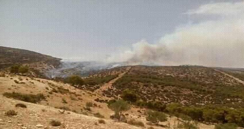 اندلاع حريق هائل بجبل السرج