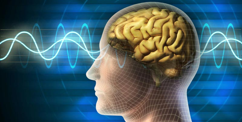 علماء يكشفون ما يحدث لدماغ الإنسان لحظة الاحتضار وبعد الموت