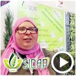 En vidéo : Tous les détails sur SICAP spécialiste de la conception et d'aménagement des paysages