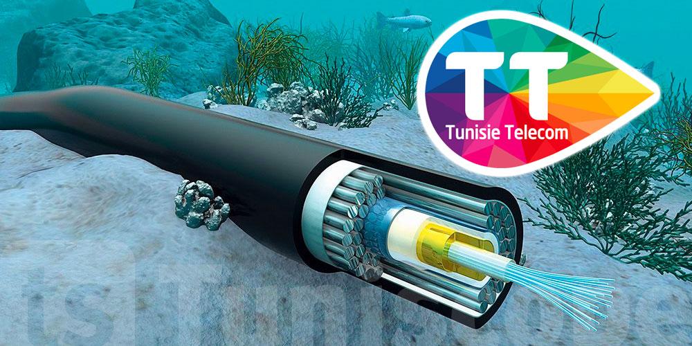 Travaux de maintenance au niveau du câble sous-marin international