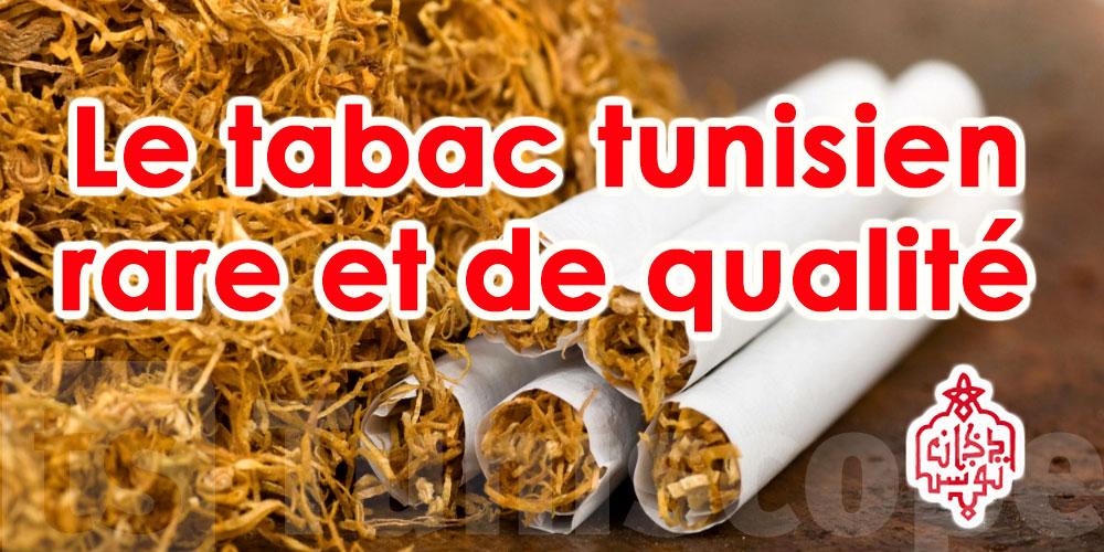 RNTA : Le sol tunisien se prête bien à la culture du tabac
