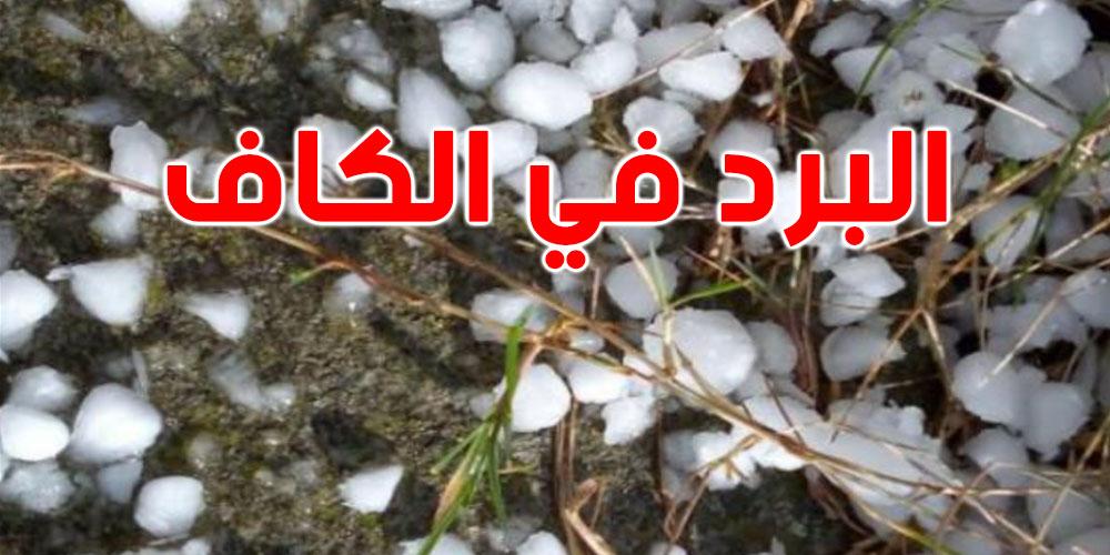 الكاف: أضرارا فادحة بالمحاصيل الزراعيّة بسبب تساقط البرد