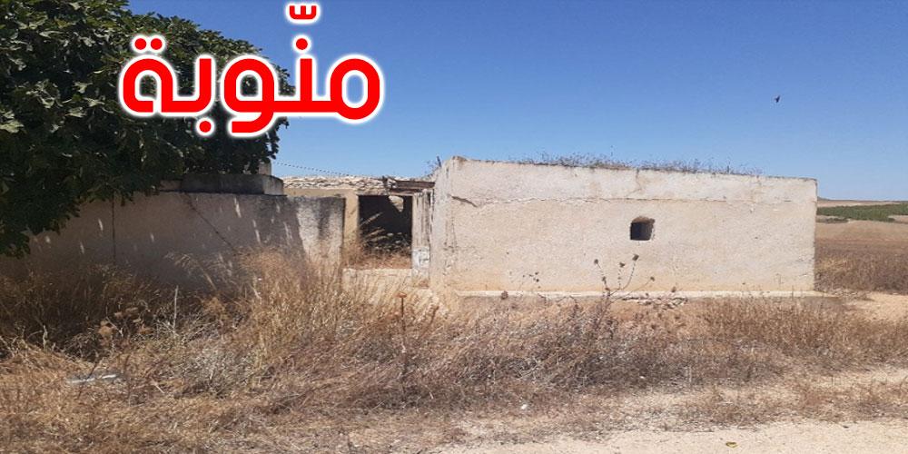 منوبة : الدولة تسترجع 307 هك من أراضيها