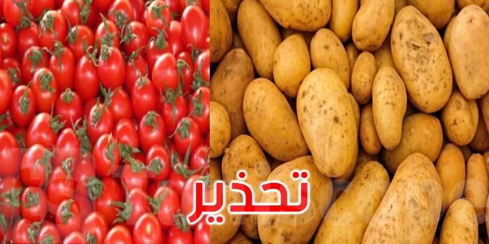وزارة الفلاحة تحذر الفلاحين من مرض يصيب الطماطم والبطاطا