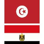 Mesures urgentes pour assurer le rapatriement des Tunisiens d'Egypte