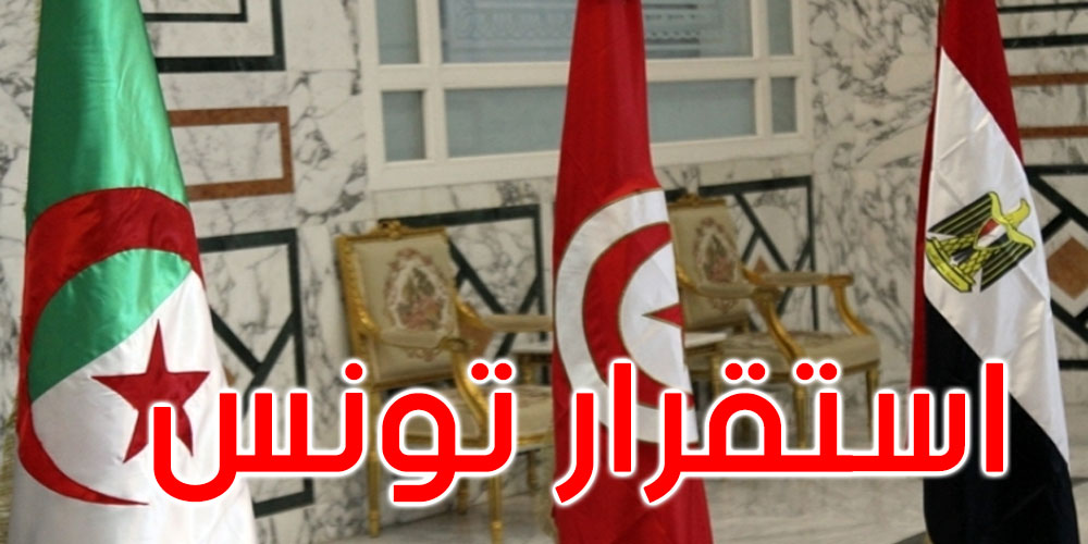 مصر والجزائر تتفقان على دعم استقرار تونس وإنفاذ اختيارات شعبها