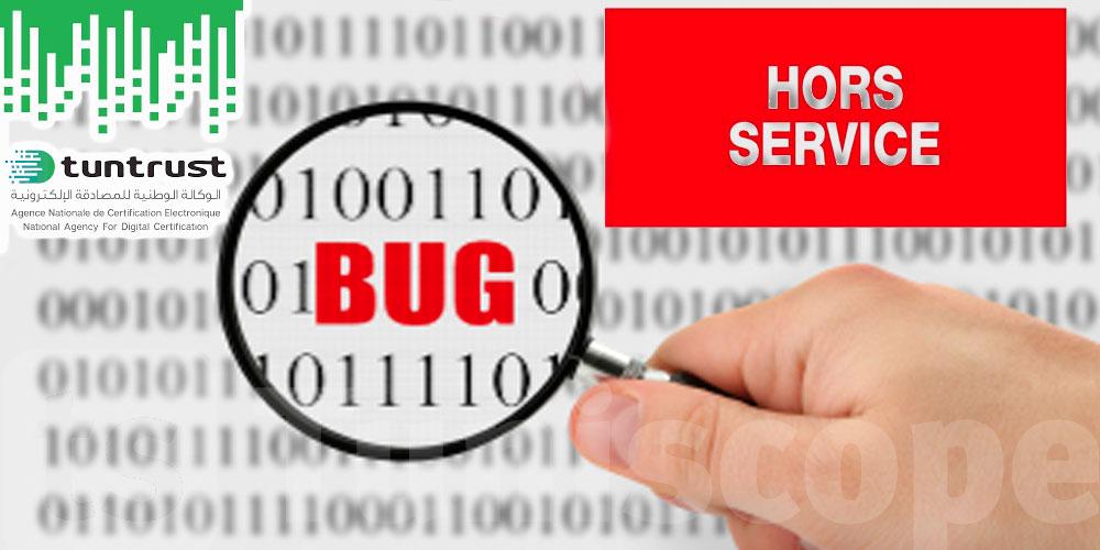 Un simple bug a mis H.S. la base de données de Tuntrust, assure sa directrice