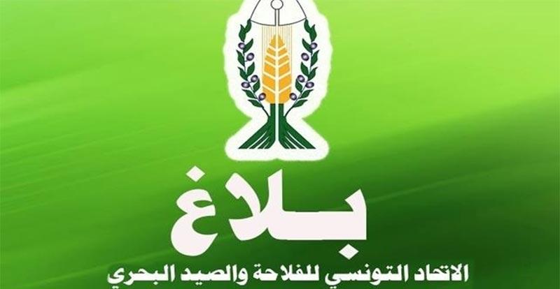 الاتحاد التونسي للفلاحة: الزيادة في الأجور ستعيد الوضع الاجتماعي الى مربع التوتر