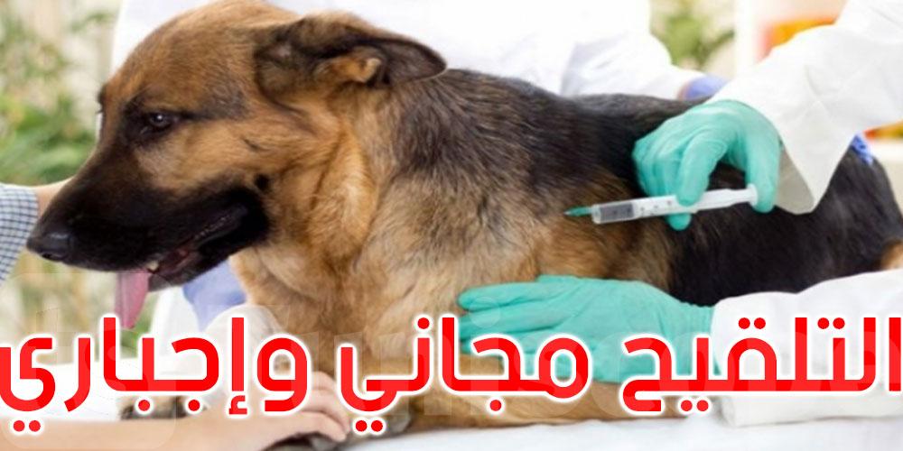 تواصل الحملة الوطنية للتلقيح ضد داء الكلب في كل الولايات