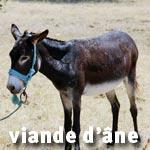 Tunisie : Augmentation de la demande sur la viande d'âne au marché central